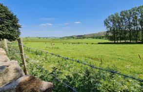 Countyfields, Embsay - Coming soon